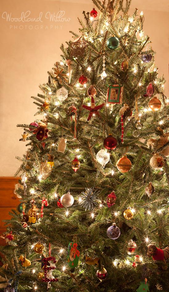 categorieschristmas